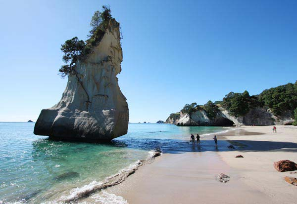 Cheap Flights To New Zealand Book Air Tickets To New