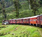 scenic mountain track
